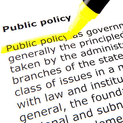 Public Policy college major examples